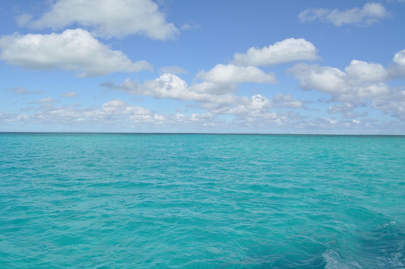 ocean1300